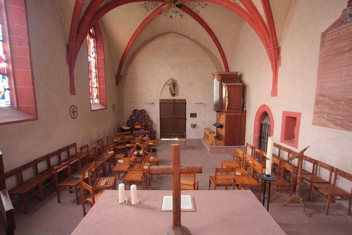 thadden grundschule heidelberg